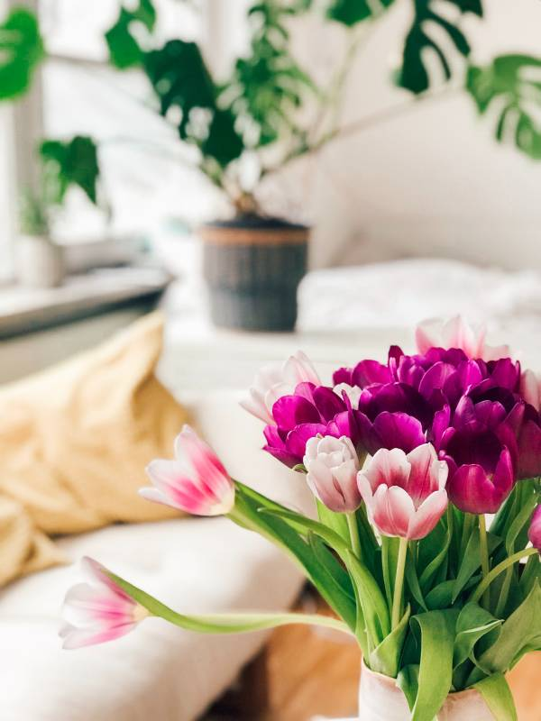 What Does Spring Cleaning Mean & What Should I Do?